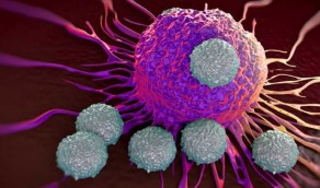 هرمون الإجهاد ينشط الخلايا السرطانية