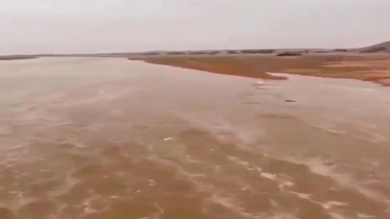 بالفيديو.. جريان سيل في شعيب السهل بالقصيم