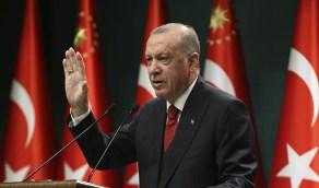 """معارض لـ """"أردوغان"""": """"من هو حاكم تركيا الحقيقي؟"""""""