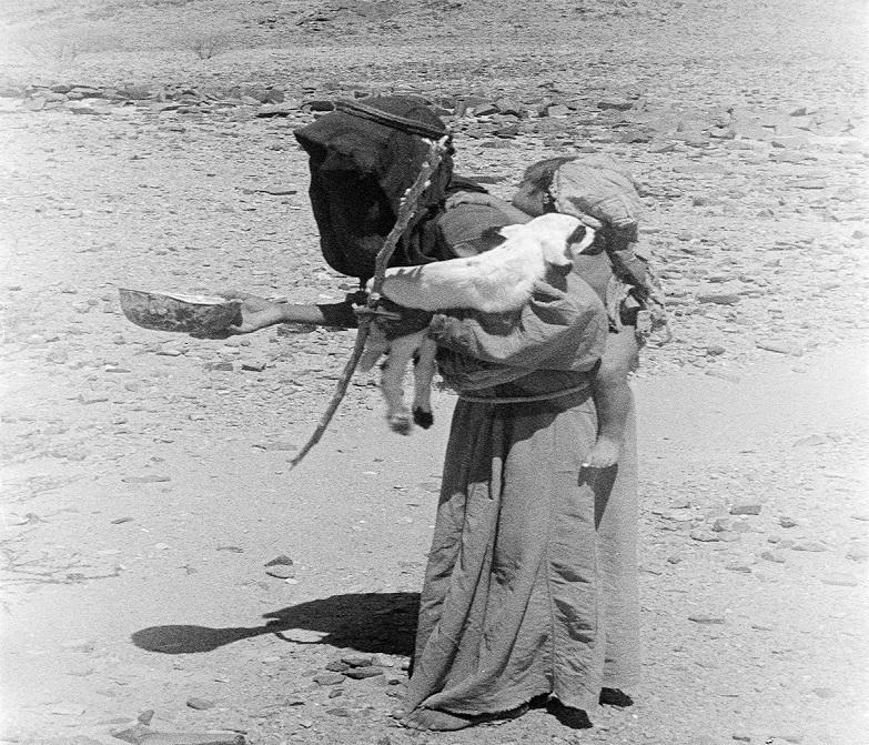 صورة تدعو للتأمل لامرأة تحمل طفلاً وشاة في عسير