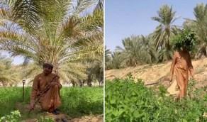 """بالفيديو.. """"الزعاق"""" يكشف موعد """"بذرة الست"""" لزراعة جميع المحاصيل"""