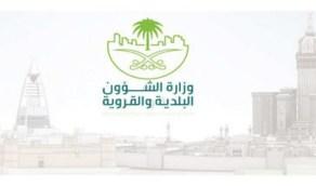 تسريع عملية نقل 7 اختصاصات من «الشؤون القروية» إلى وزارة البيئة
