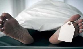 طبيبة تحتفظ بجثة زوجها 4 شهور وتقدم له الطعام يوميًا!