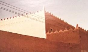 أهمية «عرائس السماء» المنتشرة في معظم مناطق المملكة
