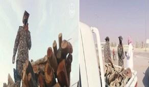 بالفيديو.. ضبط 55 مخالف بحوزتهم 12 طن حطب محلي في عدة مناطق