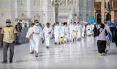 المحاكم الإدارية تنظر في دعاوى 50 شركة عمرة موقوفة