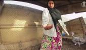 بالفيديو.. معلمة متقاعدة تتفرغ لإنتاج العسل وتربية المواشي والطيور
