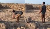 بالفيديو.. مواطن ينقذ ظبي عالق ويطلق سراحه بجزيرة فرسان