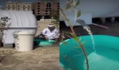 بالفيديو.. مواطن يوزع 40 خزانًا لسقيا الطيور بالخبر