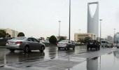 بالفيديو.. توقعات بهطول أمطار رعدية مصحوبة بزخات من البرد على بعض المناطق