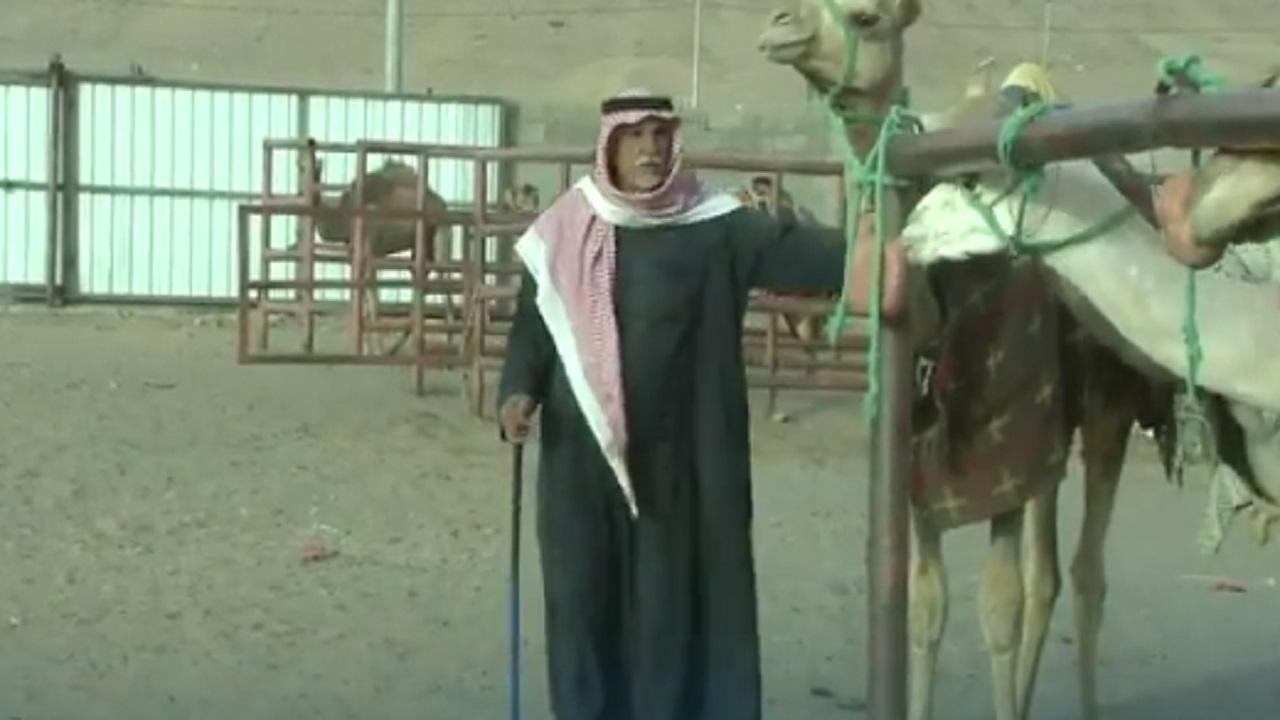 بالفيديو .. مواطن في العلا يؤسس لغته الخاصة للتواصل مع الإبل