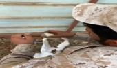 شاهد.. جندي بالحد الجنوبي يسقي قطة صغيرة ماتت أمها من الجوع والظمأ