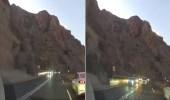 بالفيديو .. قائد مركبة يتجاوز المركبات بطريقة متهورة