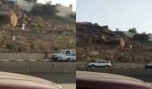 بالفيديو.. القبض على مجموعة من الوافدينأثناء صعودهم قمة جبل بالطائف