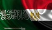 أول تعليق مصري على استهداف المنشآت الحيوية بالمملكة