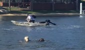 بالصور.. أم تقفز في المياه وتطارد لص حاول سرقة قارب ابنها