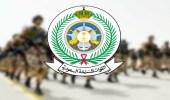 فتح باب القبول للوظائف العسكرية بالقوات المسلحة