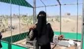 بالفيديو.. مسنة تبكي بعد قصف ميليشيا الحوثي لمخيمها السابق بصنعاء