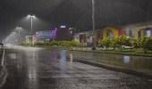 بالصور..الأمطار تزين شوارع المدينة المنورة