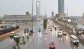 بالفيديو.. «الأرصاد»: استمرار الحالة المطرية الربيعية على الرياض