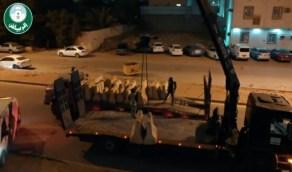 إزالة 32 ألف صبة خرسانية من الرياض