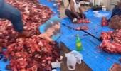 """بالفيديو والصور.. """" أمانة تبوك """" تضبط العمالة التي ظهرت في فيديو دهس اللحوم الأقدام"""