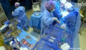 شاهد.. الشقيري يستعرض عملية زراعة كبد في جسم إنسان وربطه بالأعضاء بطريقة عجيبة