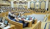 """""""الشورى"""" يناقش تعديلات على نظامي التقاعد المدني والعسكري"""