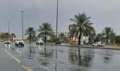 هطول أمطار متوسطة إلى غزيرة على عدة مناطق فيالباحة