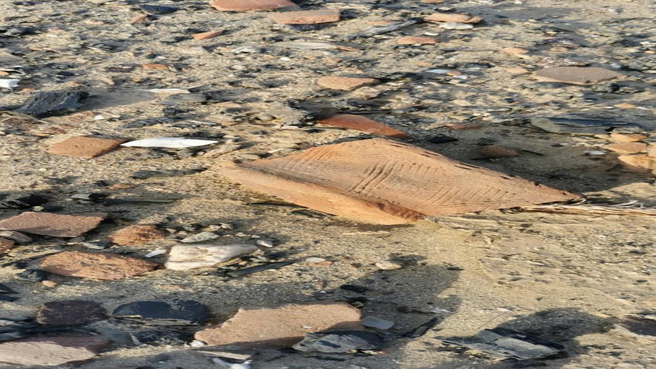 شاهد.. العثور على آثار في قرية العصامي بالقنفذة تعود لعام1370 هجريا