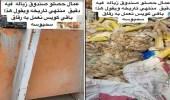 أمانة الشرقية تعلق على فيديو لعمالةوافدة تجمع دقيق منتهي الصلاحية من صندوق قمامة بالدمام