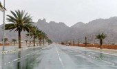 الحصيني: أمطار وحبات برد على هذه المناطق