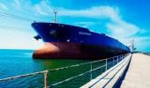بالصور.. وصول أولى دفعات منحة المشتقات النفطية السعودية إلى ميناء عدن