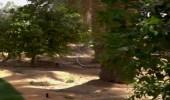 """بالفيديو.. سبب تسمية العرب موسم القيظ بـ """"كنة الجوزا"""""""