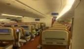 بالفيديو.. ظهور خفاش داخل طائرة تابعة للخطوط الهندية