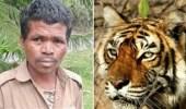 أنثى نمر تهاجم حارس حديقة حيوانات وتلتهم جسده حتى الموت