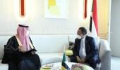 وزير المالية يناقش فتح فروع لبنوك سعودية بالسودان
