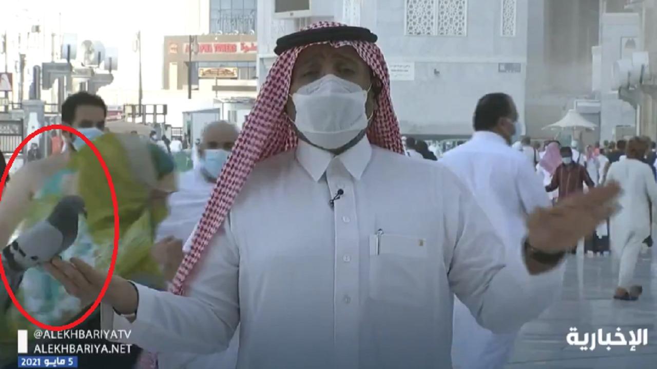 شاهد.. حمامة تحط على يد مراسل الإخبارية في سلام ببيت الله الحرام