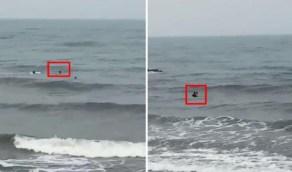 شاهد.. نجاة طفل بأعجوبة بعدما جرفته الأمواج وهو يسبح في شاطيء بيش