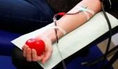 """"""" الصحة """" توضح شروط وفوائد التبرع بالدم"""