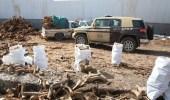 """""""الأمن العام"""" يضبط 4 مواطنين ومقيم مخالفين لنظام البيئة في مكة"""