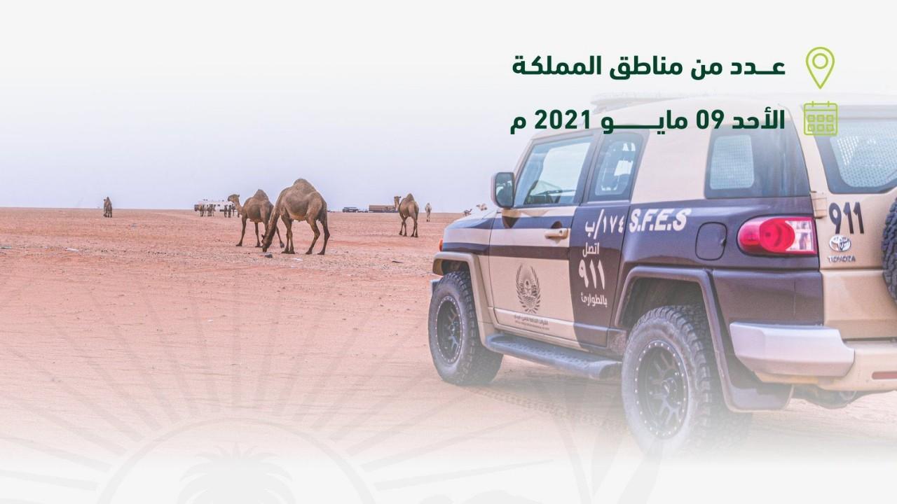  الأمن البيئي: ضبط 31 مخالفًا لنظام البيئة لرعيهم في مواقع يُمنع فيها الرعي