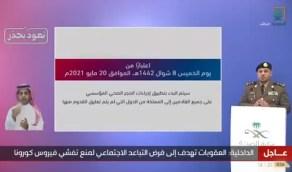 بالفيديو.. وزارة الداخلية: الجوازات أكملت استعداتها لاستقبال المسافرين غدًا