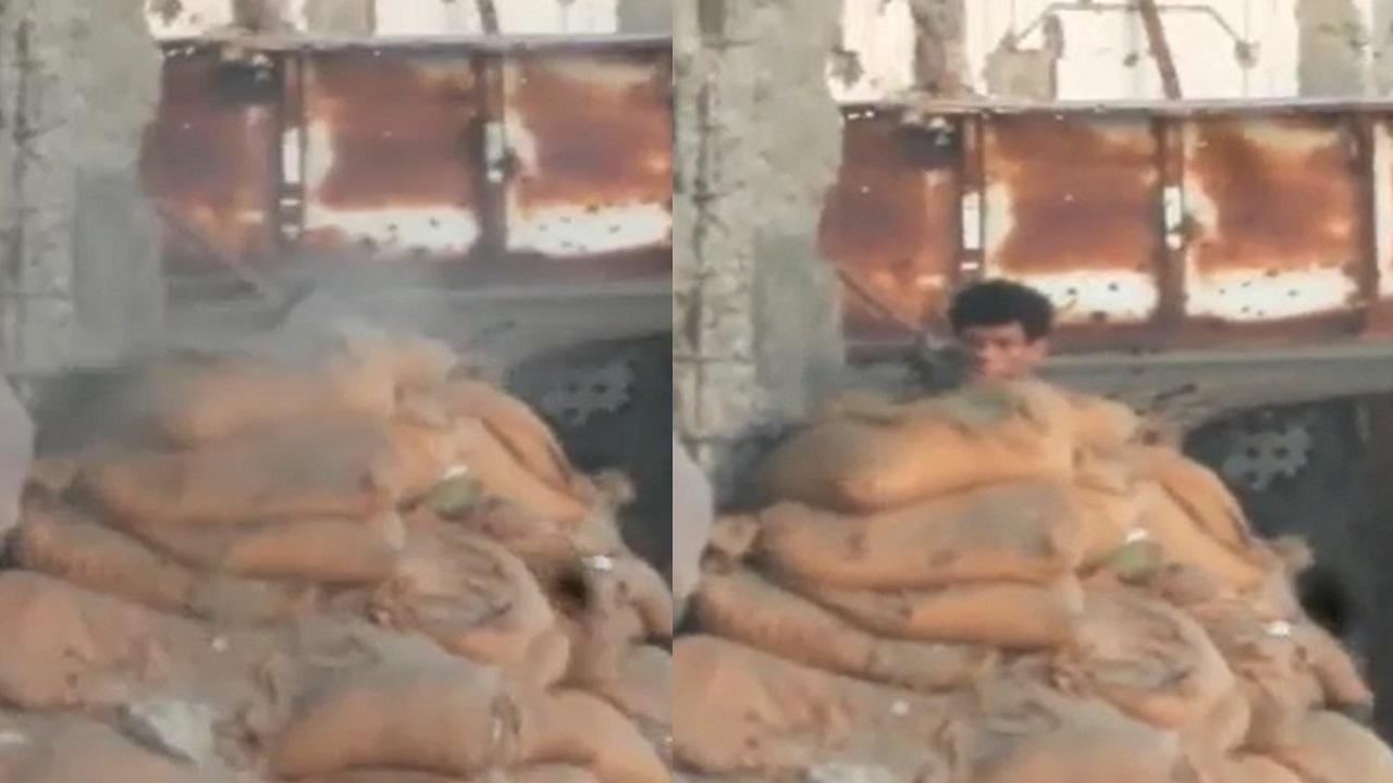 فيديو.. لحظة قنص مسلح حوثي حاول استهداف عُمال بالحديدة