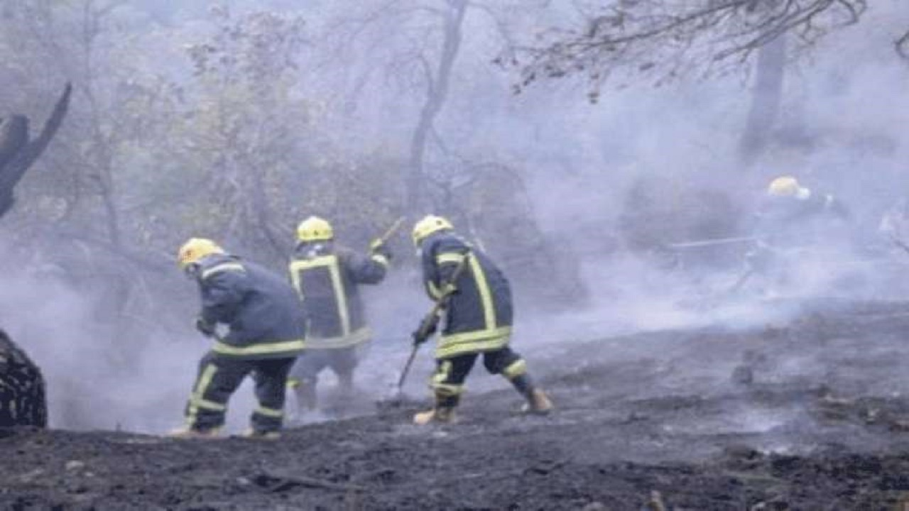 شاب يعمل في الإطفاء يفتعل الحرائق