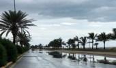 الأرصاد: سماء غائمة ورياح نشطة على عدة مناطق