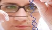 الصحة: الخلايا الجذعية ليست علاجًا للزهايمر
