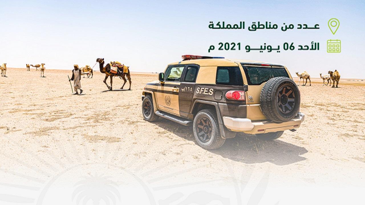 """""""الأمن البيئي"""" يوقف 21 مخالفًا لنظام البيئة لارتكابهم مخالفات رعي"""