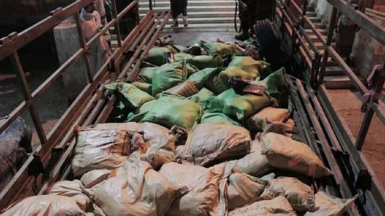 نائب يمني يتهم الحوثيين بتهريب 5 أطنان من الحشيش المخدر