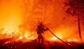بالفيديو .. الدفاع المدني يواصل إخماد حريق في إحدى الغابات شمال النماص